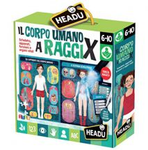 HEADU IL CORPO UMANO AI RAGGI X IT21543
